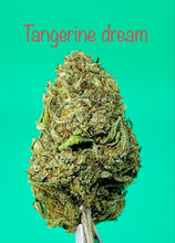 Load image into Gallery viewer, Tangerine dream 21% Cbd loose tea