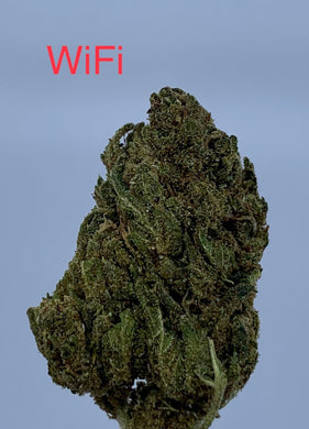 'White fire aka WiFi' Cbd loose tea