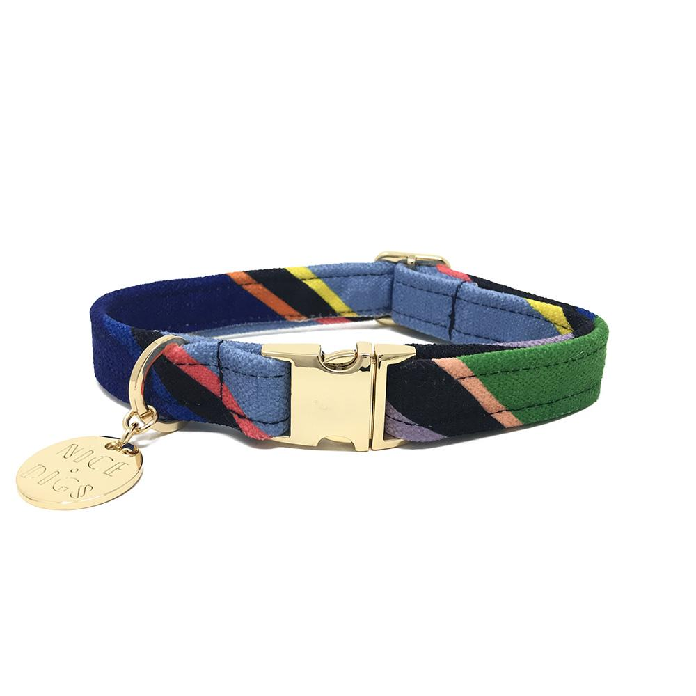 Nice Digs - Easy Tiger Dog Collar