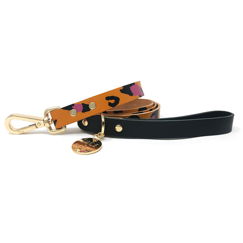 Nice Digs - Two Tone Dog Leash - Animal Orange