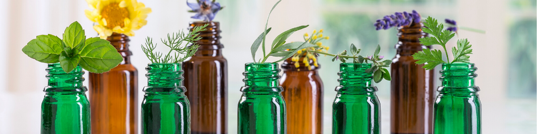 Top 10 Essential Oils