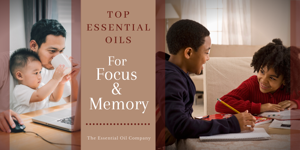 Top Essential Oils for Focus and Memory