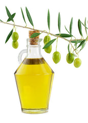 Vegetable Oils - Base Oils