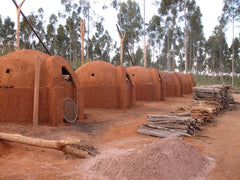 Charcoal ovens for Eucalyptus bolts