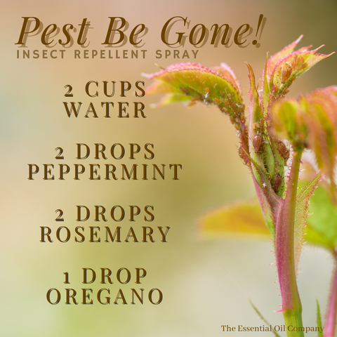 Pest Be Gone Insect Repellent Spray
