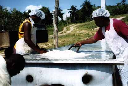 Drying coconut meat
