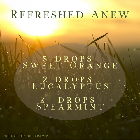 refreshed anew essential oil blend