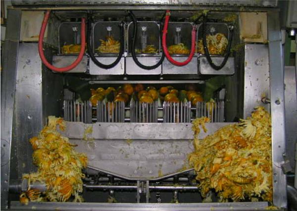 citrus oil extraction