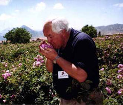 Dr Peter Wilde samples fresh rose petals