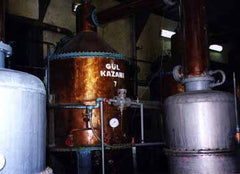 Rose oil distillation unit; retort and condenser