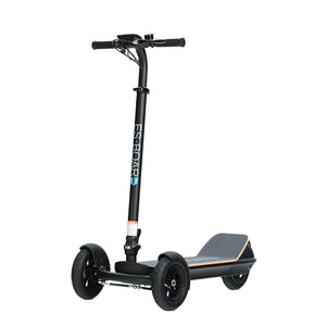 "450W 48V 8.5"" three wheel electric scooter 001"
