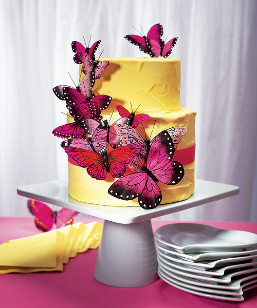 Beautiful Butterfly Cake Sets