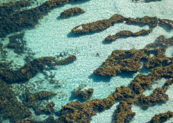 An aerial view of the reef on the grant street beach in perth western australia