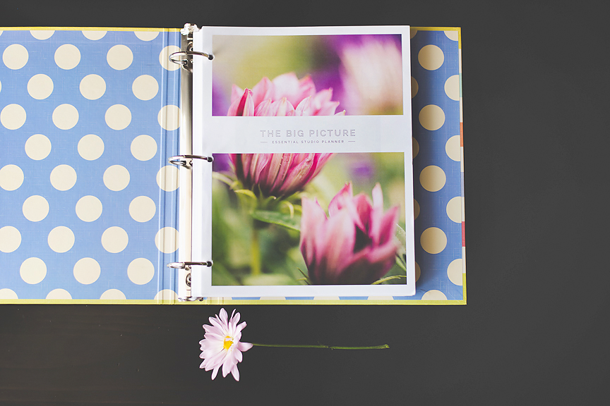 What The Pros Are Saying: The Big Picture Planner