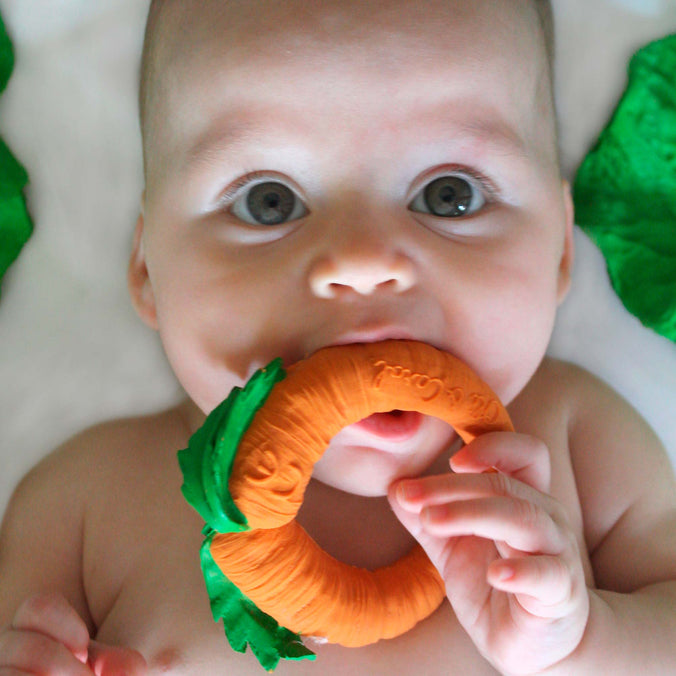 Oli & Carol Teether & Bath Toy, Cathy The Carrot