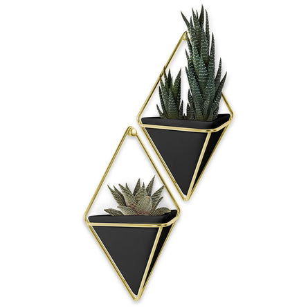 Umbra Trigg Wall Display Small Set of 2, Black/Brass