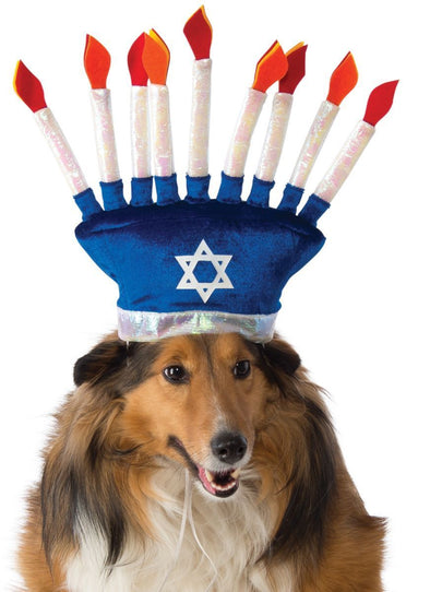 Pet Menorah Hat