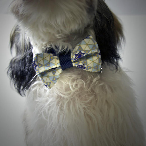 Hanukkah Bowtie for Your Pet by ChuckleHound - ModernTribe - 2