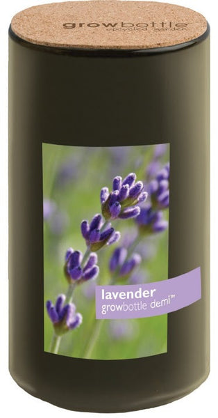 Pottingshed Creations Plant Lavender: Growbottle