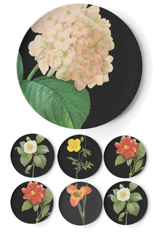 Flora Seder Plate by Thomas Paul by Thomas Paul - ModernTribe