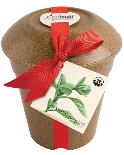 Organic Oregano in Biodegradable Pot - ModernTribe