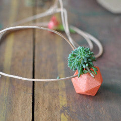 Miniature Icosahedron Necklace in Coral: A Wearable Planter by A Wearable Planter - ModernTribe - 1