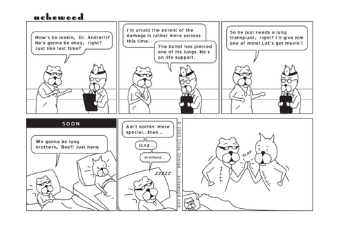 Comic - Lung Brothers (03/06/2003)