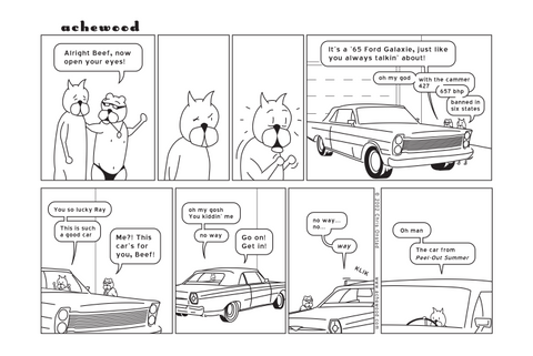 Comic - '65 Ford Galaxie - (11/25/2002)