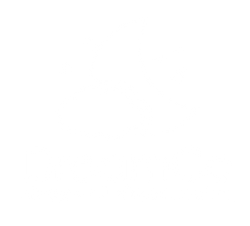 The Dreaming Company