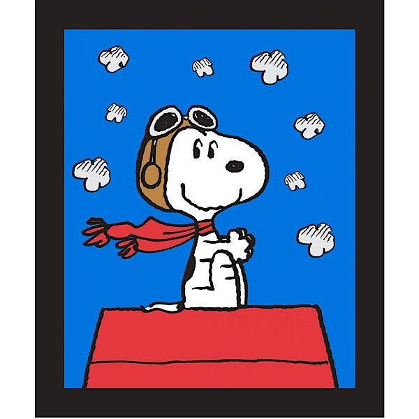 Snoopy Red Baron Quilt Panel to sew