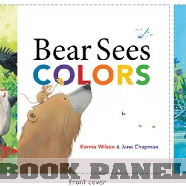 Bear Sees Colors Fabric Book Panel to Sew