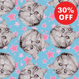 Super Star Kitties Blue Fabric to sew - QuiltGirls®