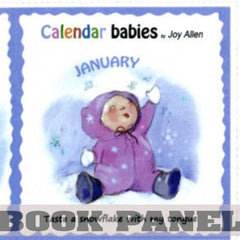 Calendar Babies Fabric Book Panel to Sew - QuiltGirls®