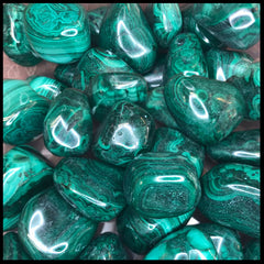 Malachite 1lb. Lot