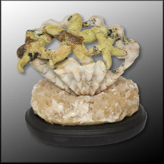 SEQ109art Serpentine in Quartz Starfish