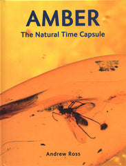 Amber-The Natural Time Capsule