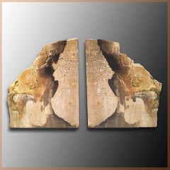 BKD261 Petrified Wood Bookends