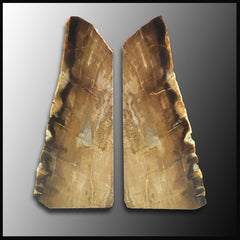 BKD266 Petrified Wood Bookends