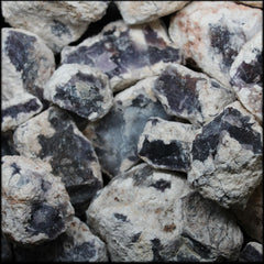 Salvia Purple Chalcedony #2, 5lb Lot