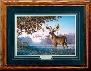 Limited Edition Classic Paper Framing 5A