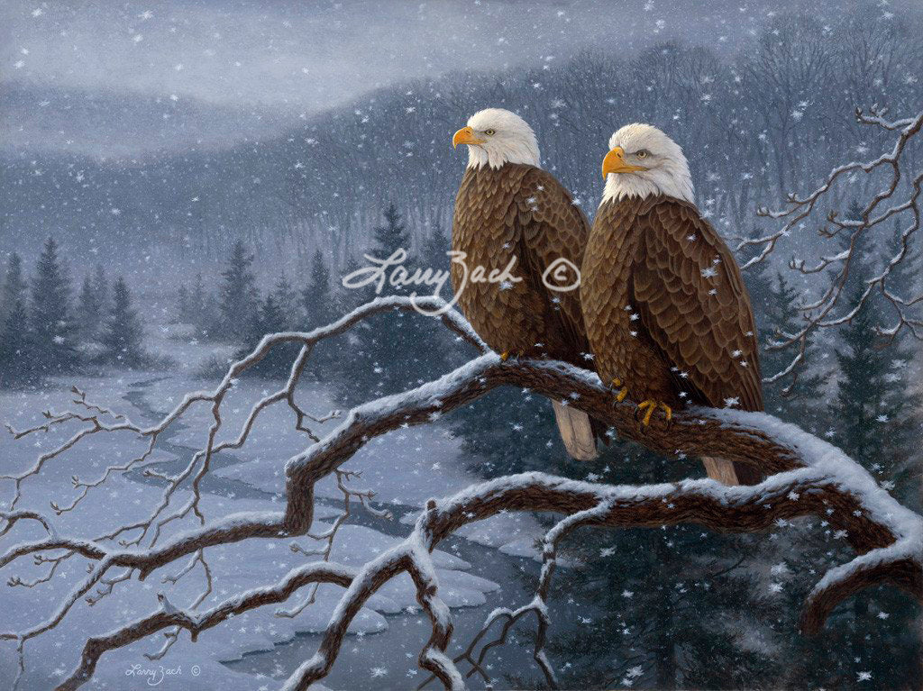 Evening Snowfall - Decorah Eagles by Larry Zach