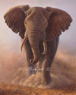 Charging Bull — African Elephant by Larry Zach