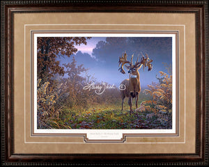 Limited EditionClassic PaperFraming 17A