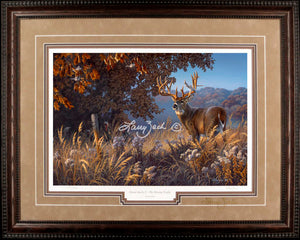 Limited Edition Classic Paper Framing 17A