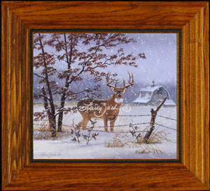 Open EditionDecorator CanvasFraming 1A