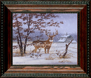 Open EditionDecorator CanvasFraming 2A