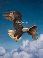 Flying HIgh – Bald Eagle by Larry Zach