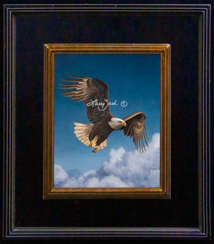 Flying High – Bald Eagle