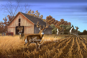 Heading for Cover - Whitetail