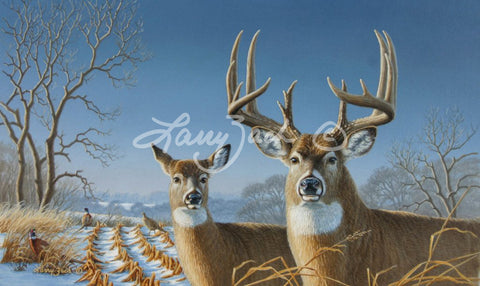 1997 Iowa Habitat Stamp - Whitetail